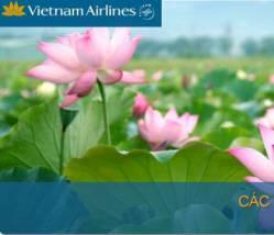 VNA: Bay cùng hoa sen giá rẻ bất ngờ