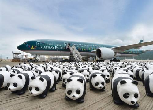Đại lý vé máy bay Cathay Pacific ở Việt Nam